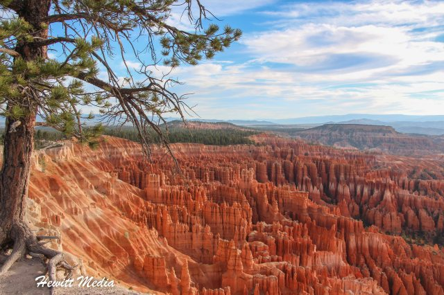 Bryce Canyon National Park-3305