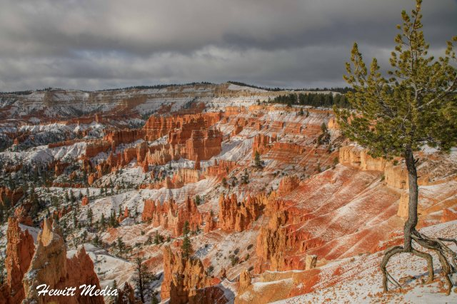 Bryce Canyon National Park-6883
