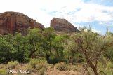 Canyonlands National Park-4193